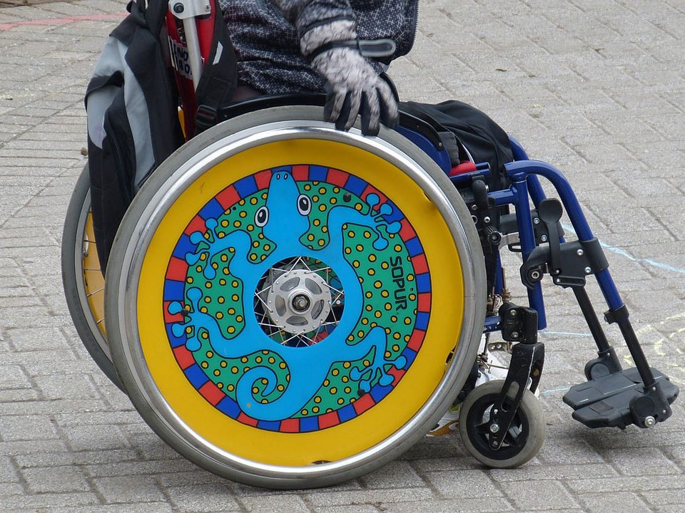 tjelesni invaliditet